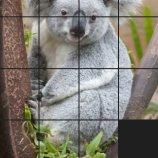 Скриншот Puzzle Me