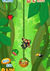 Обложка Fruit Monkeys