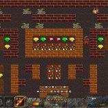 Скриншот Bomberman vs Digger
