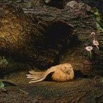 Скриншот Marvellous Mice Adventures: Meeting Sea Rat – Изображение 3