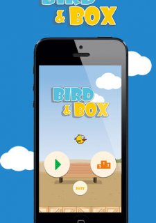 Bird & Box
