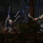 Скриншот Dungeons & Dragons Online – Изображение 38