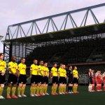 Скриншот UEFA Euro 2004 – Изображение 13