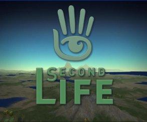 Совет директоров разработчика Second Life выбрал нового главу