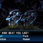 Скриншот Shin Megami Tensei: Devil Summoner - Soul Hackers – Изображение 17