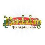 Скриншот Bardadum: The Kingdom Roads