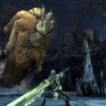 Скриншот Monster Hunter Tri – Изображение 19