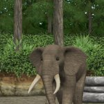 Скриншот My Zoo – Изображение 12