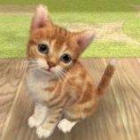 Скриншот Nintendogs + Cats – Изображение 9