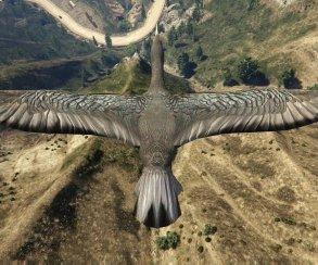 Мир Grand Theft Auto 5 глазами птиц