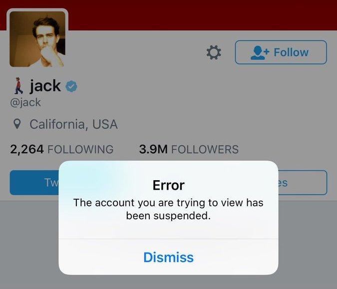 Twitter забанил собственного CEO. По ошибке - Изображение 1