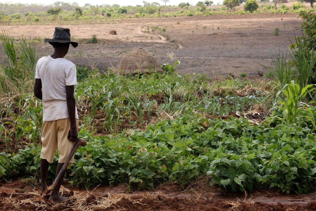 Игра c поддержкой Google Earth помогает африканским фермерам - Изображение 1