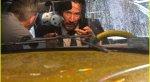 Промокший Киану Ривз ссобачкой нановых фото сосъемок фильма «Джон Уик3». - Изображение 2