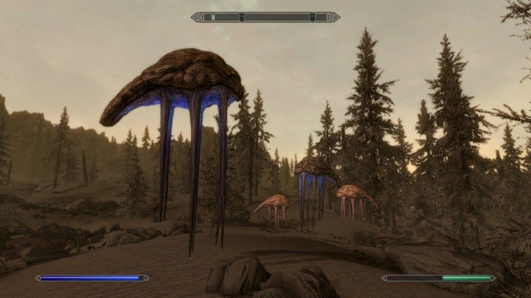 Как TES 5: Skyrim выглядит иработает наNintendo Switch? Отвечаем скриншотами игифками | Канобу - Изображение 16