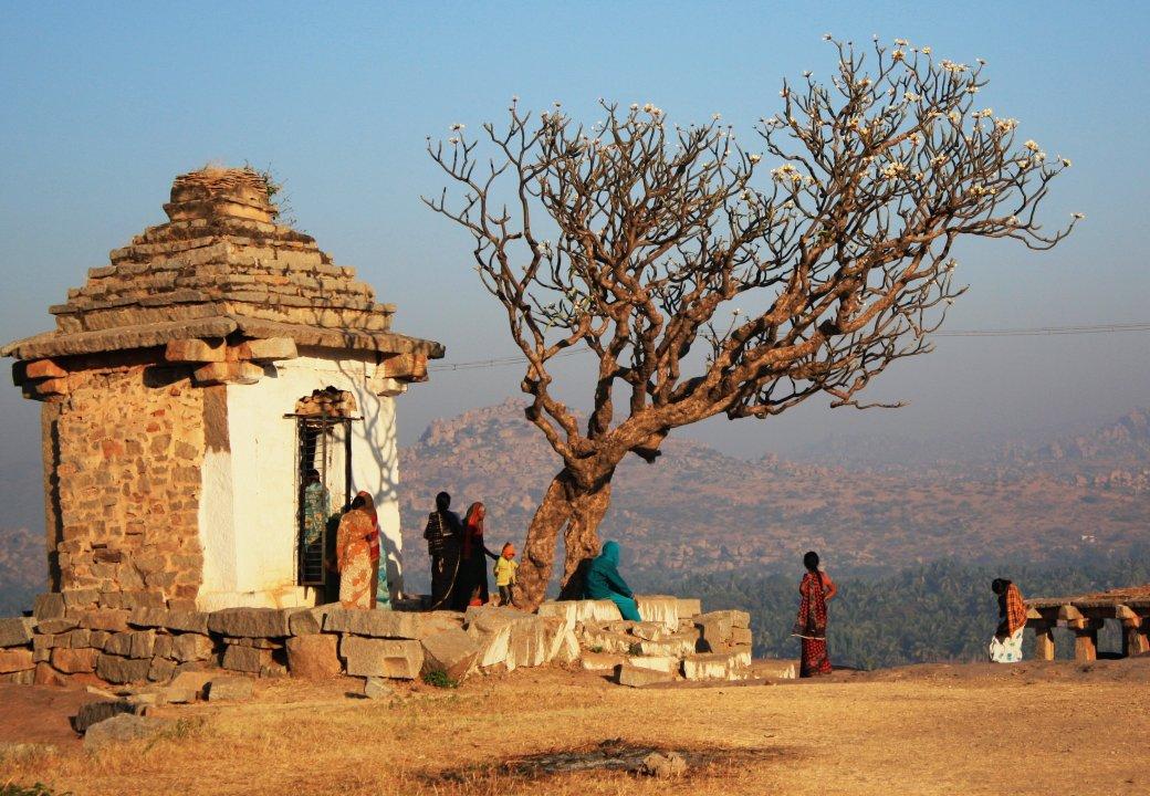 Индия глазами Трофимова   Канобу - Изображение 6399